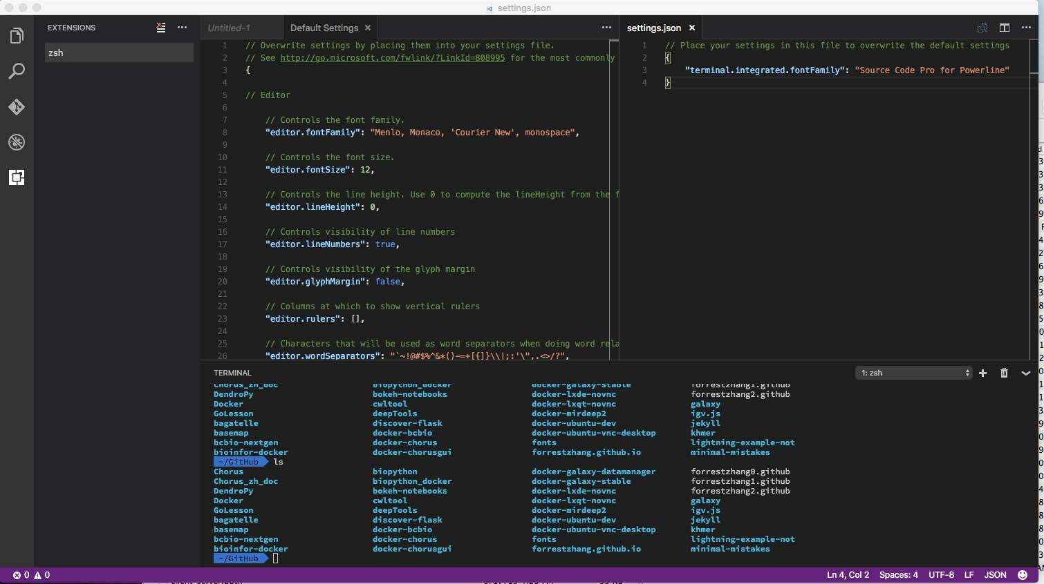 Visual Studio Code zsh powerline - Tao Zhang's github